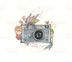 Vintage Retro Photo Camera In Flowers Royalty Free