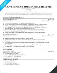 56 Best Federal Government Resume Template