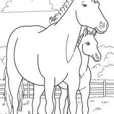 Farm Animal Coloring Book AZ Pages