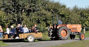 Bergmans Pumpkin Patch by Seven Farms On Clallam County Farm Tour Peninsula Daily News