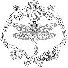 Celtic Knotworkdouble Dragons And Dragonfly Outline