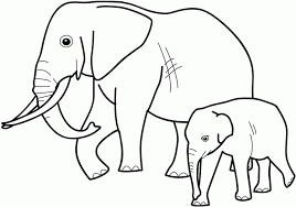 Elephant Printable Coloring Pages