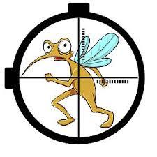 mücken in der wohnung bekämpfen vertreiben hausmittel