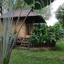 Amazoncom Giantex 5 Garden Bridge Wooden Stained Finish