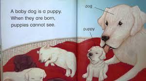 Halloween Picture Books Online by Baby Animals Level 1 Read It Yourself Kindergarten Read Aloud