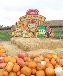Tanaka Farms Pumpkin Patch Directions by Tanaka Farms Hello Kitty Pumpkin Patch My Styled Life