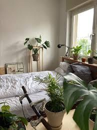 pflanzliche mitbewohner im schlafzimmer schlafzimmer