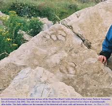 Trough Cross Bedding by 17 Trough Cross Bedding Chapter 6 Sedimentary Rock Geology