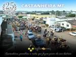 imagem de Castanheira Mato Grosso n-11