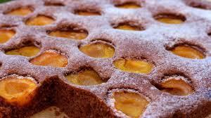 schoko aprikosen blechkuchen mrs flury gesunde rezepte