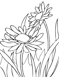 Color Flowers Drawing Pages Free Download Clip Art Spring Drawings Easy