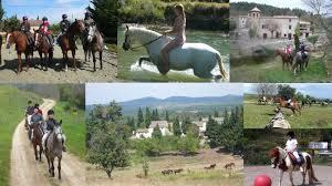 chambre d hote equitation centre équestre poney centre équestre entre carcassonne et