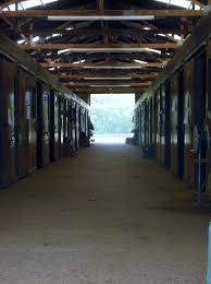 Horse Stables, Facilities, And Instruction In Mid TN | Peachtree Farms Professional Senior Vet Standing Near Calves Barn In Livestock Veterinary Skills Center Lincoln Memorial University About Us Meadowridge Hosp Groton Ny Red Hospital Vetenarian Dahlonega Ga Usa Houses Missing Family House Old Wooden Shed Pine Path Photo Gallery Mccmaple Woods Tech Hosts Successful Haunted Farmer And Vet With Turkey In Barn Stock Royalty Free Image Midsection Of Female Examing Horse At Project 365 Day 16 Vintage Emily Carter Mitchell Sugar Factory Clinic Horse Stethoscope Photos
