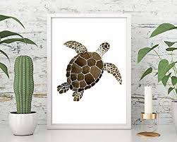 kunstdruck din a4 ungerahmt schildkröte turtle maritim