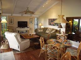 Vaulted Ceiling Living Room Design Ideas 13