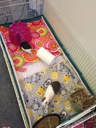 Pine Bedding For Guinea Pigs by The Easiest Way To Do Fleece Bedding Small Animals Rabbit And Easy