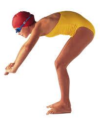 Swimming Club Adult Beginner Pool People Png Clip Art Free Stock