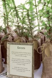 Christmas Tree Seedlings by Plant A Tree Wedding Party Favors Mmmm Order From The Forest