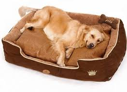 Kirkland Dog Beds by Gorgeous Dog Beds Costco Canada Dog Beds Costco Canada Kirkland