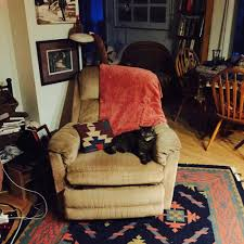 Stickman Death Living Room Youtube by Eve U0027s Garden