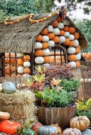Stone Mountain Pumpkin Festival by 144 Best Autumn At The Arboretum Images On Pinterest Dallas