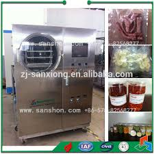China Pilot Scale Freeze Dryer Home Lab Scale Freeze Drying
