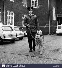 Duke An 8 Year Old Police Dog Pictured With His Handler P.C. ... The John Geer Case New Details From The Police File Raise Carrickfergus Northern Ireland 4th June 2013 Army Ato Leaves Monroe College Opens Barnes Noble Bookstore With Starbucks Protective Order Issued Against Parents Accused Of Locking Child Updated With Pictures Police Search A House On Road Ldon Wikiwand Familypedia Fandom Powered By Wikia Duke An 8 Year Old Dog Pictured His Handler Pc City Okc Can Body Cameras Really Reduce Use Force Barnesjewish Ranks 12 In List Americas Top Hospitals