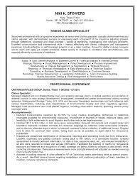 Bank Examiner Resume Cmt Sonabel Org Rh Banking Executive