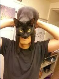 cat batman costume best 25 best batman costume ideas on all justice