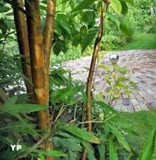 jardin du beau pays flandre 28 images le jardin du beau pays