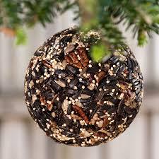 Christmas Birdseed Ornaments Set Of 3