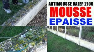 anti mousse murs exterieurs anti mousse toiture pro mur terrasse test sur clôture mousses