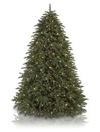 Shasta Fir Artificial Christmas Tree