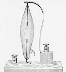 edison light bulb patent edison biography edison national