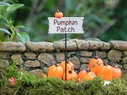 Pumpkin Patch Caledonia Il For Sale by Fairy Garden Sign Halloween Fall Miniature Pumpkin Patch