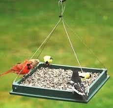Platform Bird Feeders and Fly Thru Bird Feeders