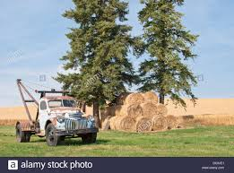 An Old Farm Truck Parked At The Edge Of A Vast Wheat Field On The ... Old Chevy Farm Truck Reflections On The Landscape Pin By Barb Abernathey Pickup Truck Pinterest Dads Cars And Stunning Artwork For Sale Fine Art Prints Farmtruck Azn Twitter Were In Australia Building One Of The Zen Seeing An Way Mystic Stock Photo Picture And Royalty Free Image Getty Images Photos Alamy Farm Youtube Trucks Best 2018 Took My Old Out For A Spin First Dry Sunday Chevrolet Junkyard Photography Printable Downloaddigital