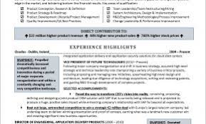 Information Technology Resume Examples No Experience Unique Executive Level