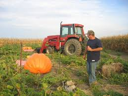 Southeast Wisconsin Pumpkin Patches by Land Of The Giants Pumpkin Farm Wisconsin Haunted Houses