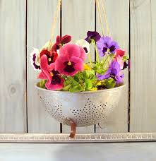 Flower Pot Vintage Strainer Rustic Country Home