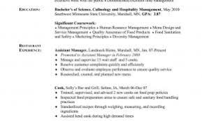 Resume Summary Examples Cook Best Of Prep Sample