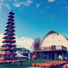 Best Pumpkin Patch Madison Wi by 10 Ways To Experience Wisconsin Agriculture The Bobber