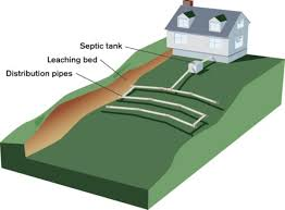 Caring For Septic Systems - Old House Restoration, Products ... Septic Tank Design And Operation Archives Hulsey Environmental Blog Awesome How Many Bedrooms Does A 1000 Gallon Support Leach Line Diagram Rand Mcnally Dock Caring For Systems Old House Restoration Products Tanks For Saleseptic Forms Storage At Slope Of Sewer Pipe To 19 With 24 Cmbbsnet Home Electrical Switch Wiring Diagrams Field Your Margusriga Baby Party Standard 95 India 11