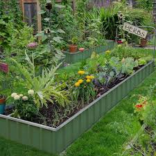 The Vegetable Garden Comes To Life The Impatient Gardener