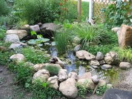 Wildlife Pond - Our Tiny Homestead Water Gardens Backyard Ponds Archives Blains Farm Fleet Blog Pond Ideas For Your Landscape Lexington Kentuckyky Diy Buildextension Album On Imgur Summer Care Tips From A New Jersey Supply Store Ecosystem Premier Of Maryland Easy Waterfalls Design Waterfall Build A And 8 Landscaping For Koi Fish Pdsalapabedfordjohnstownhuntingdon Pond Pictures Large And Beautiful Photos Photo To Category Dreamapeswatergardenscom Loving Caring Our Poofing The Pillows