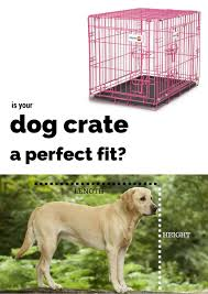 How To Build A End Table Dog Crate by Best Dog Crates And Playpens For Labradors Or Large Breeds