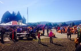 North Plains Pumpkin Patch by Your Favorite Pumpkin Patches In Nw Oregon Sw Washington Kptv