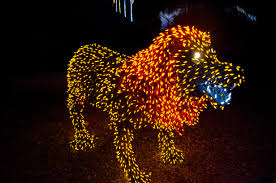 ZooLights At The Phoenix Zoo Top Places To See In Arizona