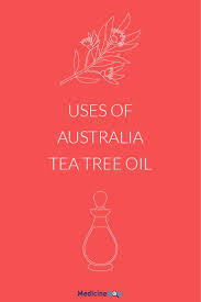 Sperti Vitamin D Lamp Uk by Best 25 Melaleuca Australia Ideas Only On Pinterest Essential