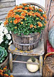 Primitive Decorating Ideas For Outside by 711 Best Fall Is For Planting Your Porch Images On Pinterest